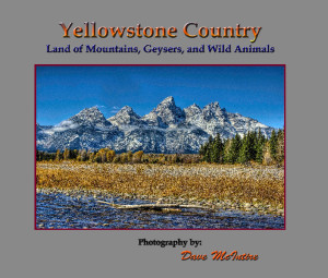 yellowstone county